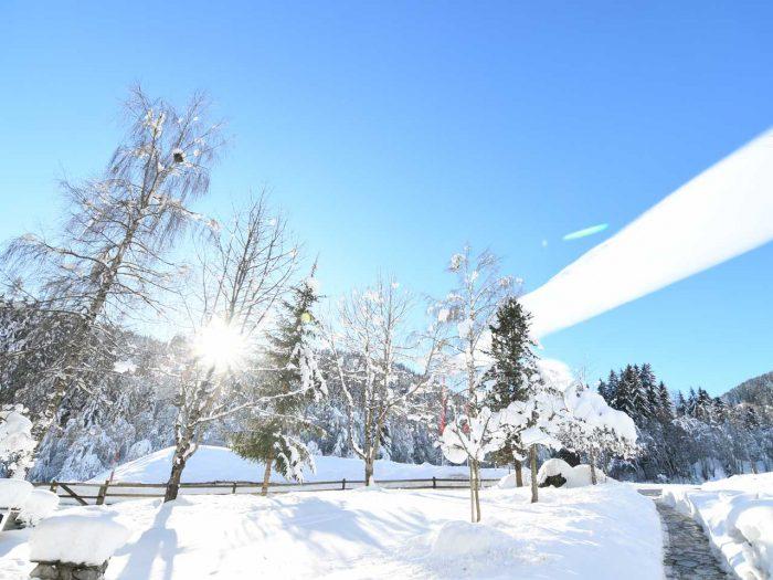Natur pur Surselva – Winterpackage